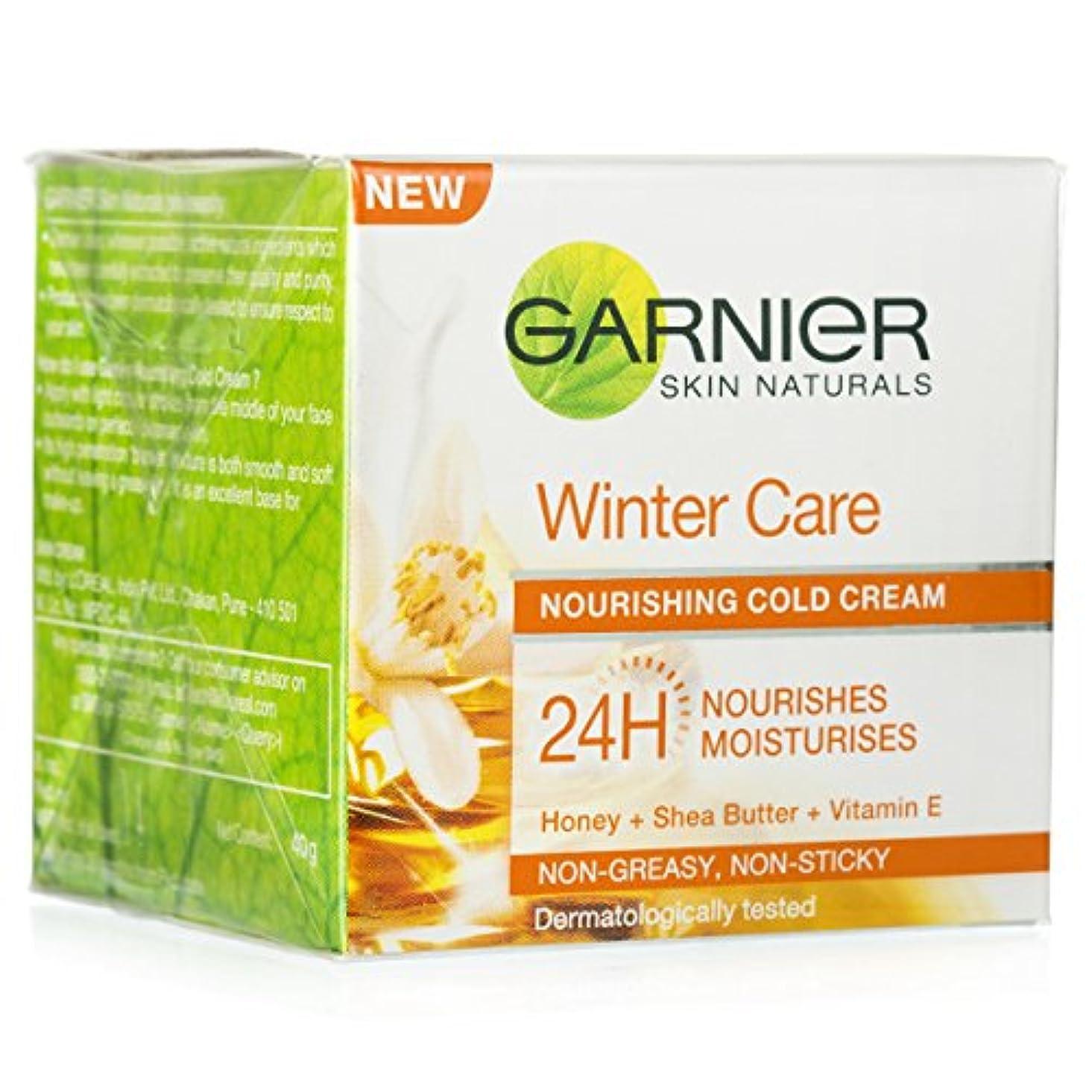 懸念報酬マラドロイトGARNIER SKIN NATURALS WINTER CARE NOURISHING COLD CREAM 40GM
