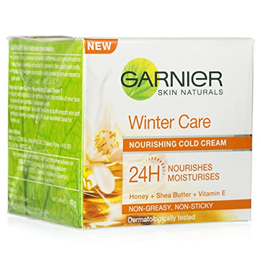 簿記係磁石仕事に行くGARNIER SKIN NATURALS WINTER CARE NOURISHING COLD CREAM 40GM