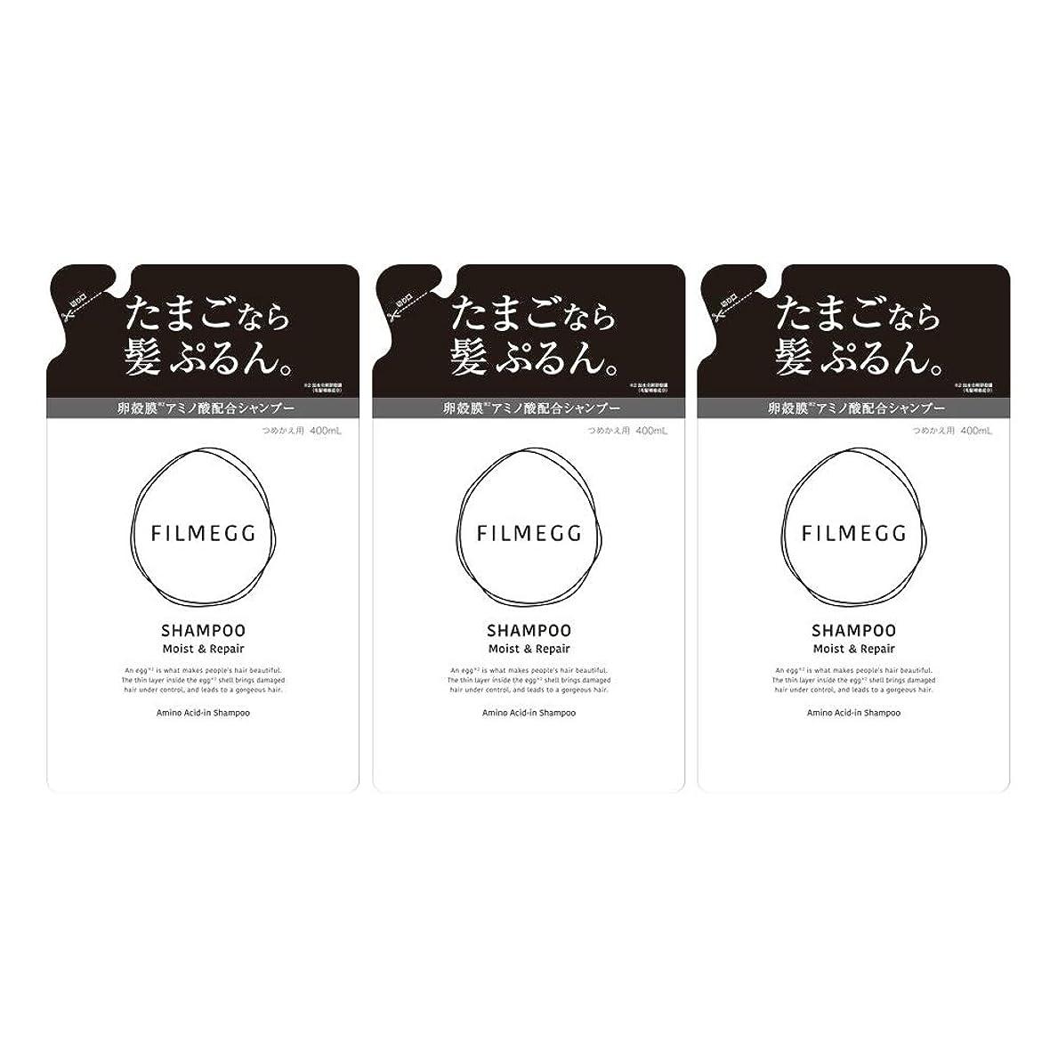 エキスパート彫刻スキップ【3個セット】FILMEGG(フィルメッグ) シャンプー 詰替え 400ml