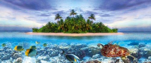 Tetra Repto Aqua Set, Komplettset (für Wasserschildkröten mit Innenfilter, Heizer, LED-Beleuchtung und Deko-Insel mit integriertem Futterplatz, ideal zur Aufzucht von Baby- und jungen Schildkröten) - 7