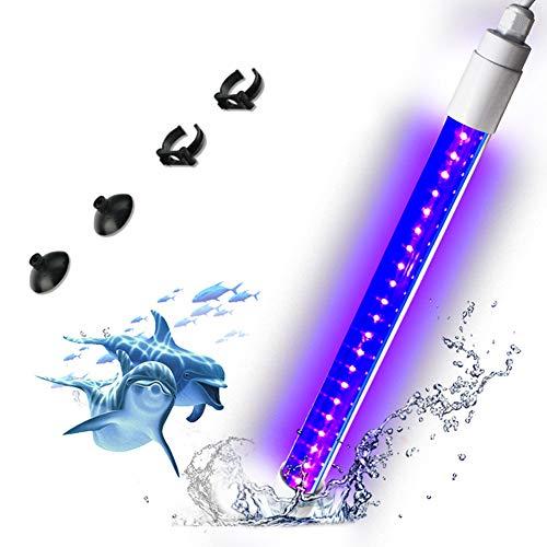LYGID Aquarium UV sterilisatoren desinfektion Lampe licht Fish tankkeimtötende Bottom Tauchlampe Sauberes Wasser Algenentfernung 99,9% Virus Bakterien FüR Schwimmbad,0to5w