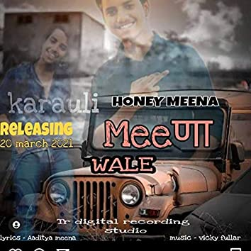 Meena Karauli wale (feat. Honey Meena)