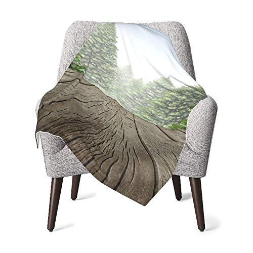 Nature Festive Season Mother Earth Greenland Wooden Deck Woodland Environment Image Fern Green Cocoa Baby Blanket, Baby Quilt, Baby Comfort Blanket, Baby Double Blanket