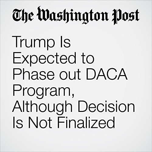 Trump Is Expected to Phase out DACA Program, Although Decision Is Not Finalized copertina
