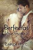 Perfectas imperfecciones (Spanish Edition)