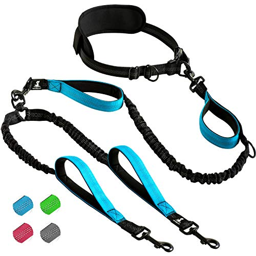 SparklyPets Hands Free Double Dog Leash
