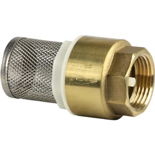 Sanifri 470010090 - Válvula de pie (latón, con resorte, cono de plástico con junta de goma, rejilla de acero inoxidable, 1