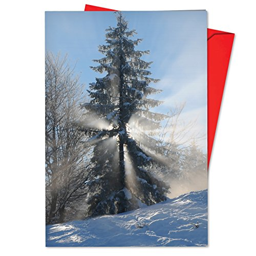 12 'Christmas Sunrise Tree' Boxed Christmas Cards with Envelopes 4.63 x 6.75 inch, Beautiful Wintry Landscape Greeting Card, Winter forest Holiday Notes, Snowy White Tree Cards B6655CXSG