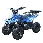 X-Pro 110cc ATV クアッド ユース ATV キッズ 四輪バギー ATV-T039