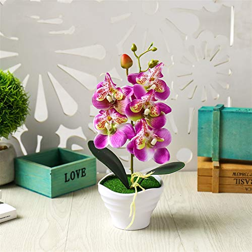NIRIBALLA Phalaenopsis Bonsai de Cinco Cabezas Creativo jardín decoración Artificial Plantas en Maceta magnílicas Flor Artificial Flores orquídea (Color : Purple)