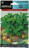 Semillas Aromáticas - Artemisa común - Batlle