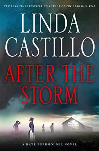 After the Storm: A Kate Burkholder Novel (English Edition)