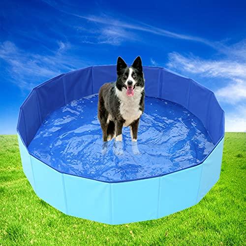 Cozywind Piscina Plegable para Perros Bañera para Mascota Piscina Portátil para Niños PVC Antideslizante 100% Seguro y No Tóxico (80 x 30 cm)