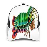 Gorra de Beisbol Espalda de Malla Senderismo al Aire Libre Sombrero Deportivo,Crustáceos Peacock Mantis Camarón Arrecife Acuario Agua Salada Estomató,Gorra de Sol de Enfriamiento para Hombres Mujeres