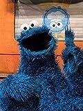 Sesame Street 50th Anniversary Memories: Cookie Monster