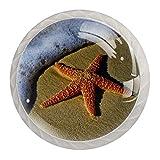 Perillas de gabinete de cocina Perillas decorativas redondas Gabinete Cajones de armario Tirador de tocador 4PCS Estrella de mar Playa Arena Costa