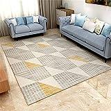 alfombras Que se Pueden Fregar Oficina Alfombra Gris, Resistente al Desgaste, cómodo para Caminar, fácil de cuidar dormitorios Juveniles Infantiles Home Decoracion 50x80cm 1ft 7.7