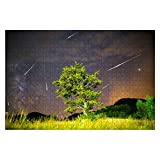 Wooden Puzzle 1000 Pieces Green Tree Milky Way Meteor Shower Solar System Stock Pictures Jigsaw Puzzles for Children or Adults Educational Toys Decompression Game -  NBWEE