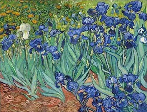 Van Gogh's Famous Painting - Irises 5D Diamond Painting - NineHorse, Full Drill Rhinestone