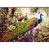 AGjDF Búho galletaDIY Pintura al óleo Digital-Lienzo preimpreso-Pintura de Lienzo Kits de Pinceles para la Imagen del Arte de la Pared_40x50cm