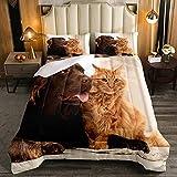 Juego de edredón de animales de tamaño individual, diseño de gato y perro, juego de cama de 2 piezas para niños, niñas, domésticos y mascotas, edredón de microfibra suave con 1 funda de almohada