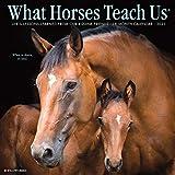 What Horses Teach Us 2021 Wall Calendar
