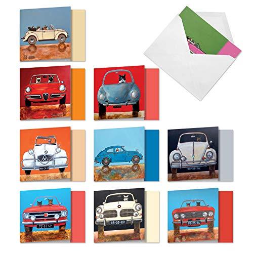 The Best Card Company - 10 All Occasion Blank Cat Cards (4 x 5.12 Inch) - Cute Assorted Bulk Card Set - Car Cats MQ4978OCB-B1x10