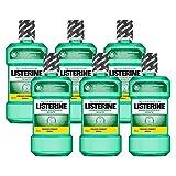 Listerine Zahn- & Zahnfleischschutz Mundspülung, umfassendes Mundwasser, antibakteriell für...