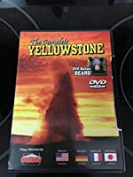 Complete Yellowstone