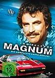 Magnum - Die komplette erste Staffel (6 DVDs)