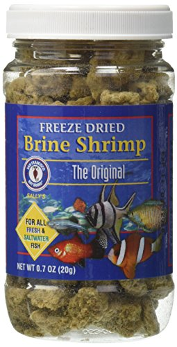 San Francisco Bay Brand ASF71109 Freeze Dried Brine Shrimp for Fresh and Saltwater Fish, 20gm