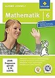 Alfons Lernwelt Mathematik 6 Einzelplatzlizenz - Ute Flierl