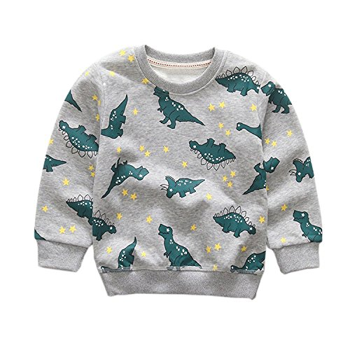 Toddler Baby Boys Dinosaur Crewneck Pullover Sweatshirt Kids Cotton Sweater Hoodie Outwear 1-7T (6-7 Years/140cm, Grey)