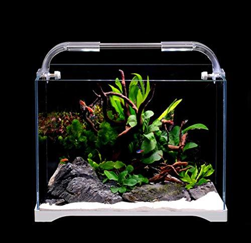 Tisch-Aquarium, klein, ökologisches Glas, Goldfisch-Aquarium