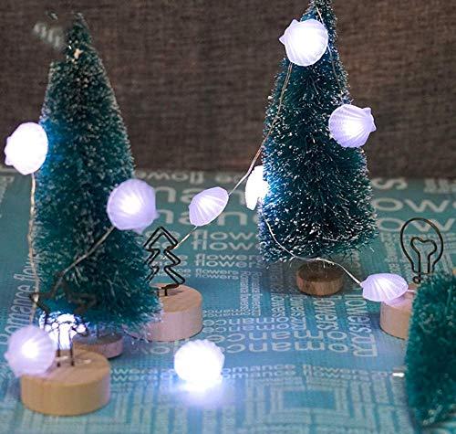 Indoor Fairy String Lights, 3M 30LED Osterdekoration String Lights Kupferdraht Lights String Batteriebetriebene Shell String Lights
