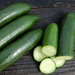 green finger cucumber