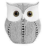Owl Statue for Home Decor Accents Living Room Office Bedroom Kitchen Laundry House Apartment Dorm Bar, APPS2Car Little Crafted Buhos Decoration for Shelf Table Decor, BFF Gifts for Owls Lovers (White)