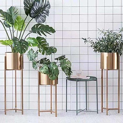 LYQZ Nordic Eisen Blume Ständer Moderne Boden-Stil Goldenen Wohnzimmer Dekoration Blume Rack Haus Pflanze Blumentopf Rahmen Balkon Display Regal (größe : 22 * 22 * 90cm) - 3