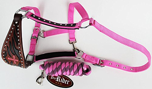PRORIDER Horse Noseband Tack Bronc Leather Halter Tiedown Lead Rope 280616
