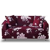 HYRGLIZI Housse de canapé imprimée pour 1/2/3/4 Places Housse de canapé extensible en Polyester Souple 1 Pièce avec housse de canapé élastique en Bas Protecteur de meubles lavable pour Chien de compa
