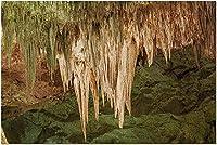 HDカールズバッド洞窟群国立公園ニューメキシコ-ビッグルーム9001625(19x27の大人向けプレミアム1000ピースジグソーパズル)