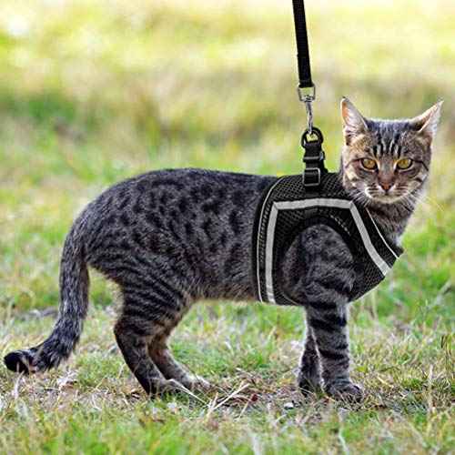 PUPTECK Cat Vest Harness and Leash Set with Escape Proof Buckle, Reflective Adjustable Soft Mesh Kitty Puppy Step-in Vest for Outdoor Walking