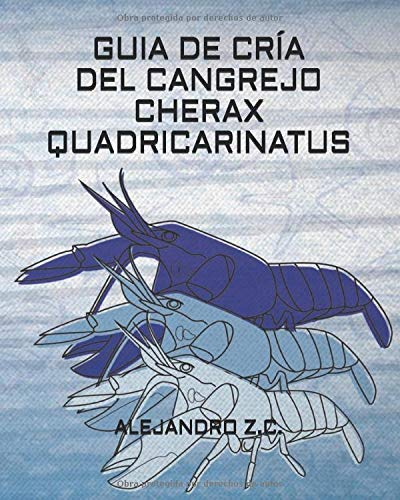 GUIA   DE CRÍA DEL CANGREJO   CHERAX QUADRICARINATUS