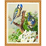 Immagine 1 vpioxd diamond painted bird dipingere