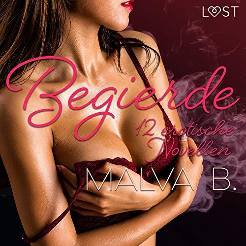 Begierde - 12 erotische Novellen Titelbild