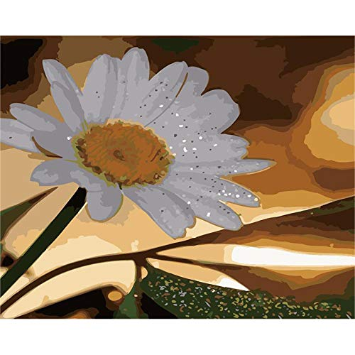 CGZLNL Pintar por Numeros para Adultos crisantemo Kit de Pintura al óleo de Lienzo DIY, Pintura por Números con Pinceles y Pigmento Acrílico 40x50 cm con Marco