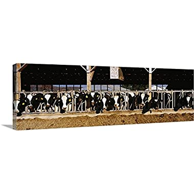 Canvas on Demand Premium Thick-Wrap Canvas Wall Art Print entitled Dairy Cows 36 x12