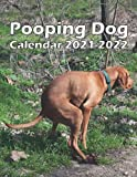 Pooping Dog Calendar 2021-2022: Monthly Planner from July 2021 to December 2022 Perfect gift Ideas For dog lovers in birthday or Christmas.