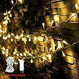 LED Lichterkette, von myCozyLite, 200 LED Deko Lichterketten in 20 Metern Lang, Warmweiß, Wasserdicht für Innen und Außen