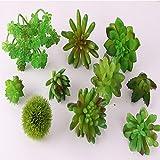 ToBe-U Plantas Artificiales de Plantas suculentas,...